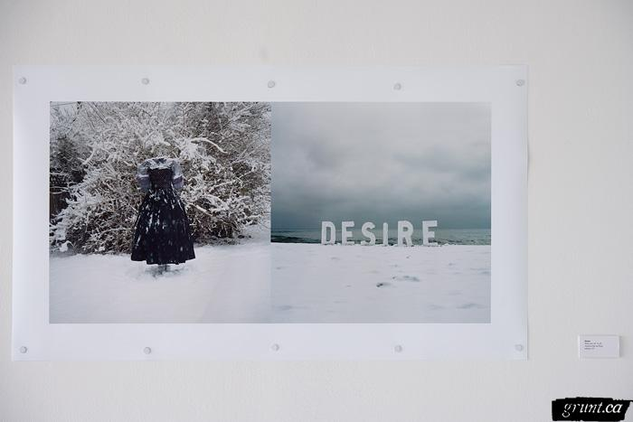 2010 04 01 Nicole Dextras Signs of Change two image collage left image frozen dress right image ice letters DESIRE